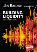 Building liquidity: debt capital markets
