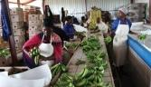 Two-fifths of Mozambique's GDP comes from farming and food