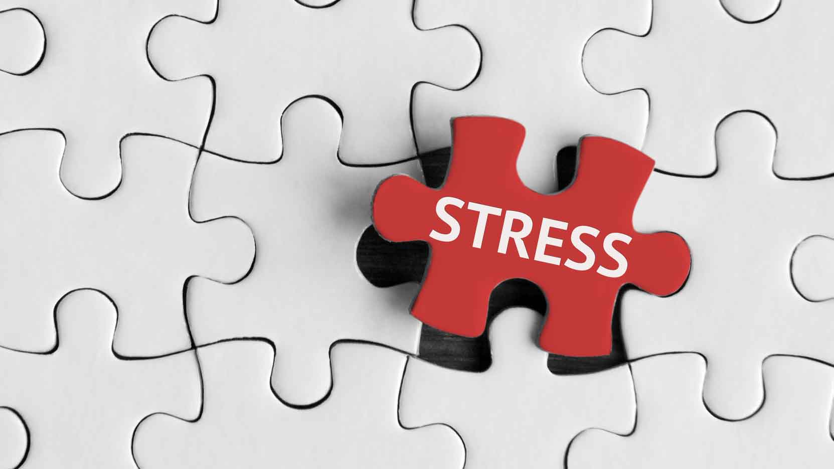 stress test 16x9