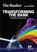 Transforming the bank: Regulation and strategy
